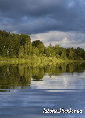 Правила поведінки на воді та поблизу водоймища
