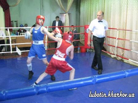 Боксерський турнір у місті Люботині